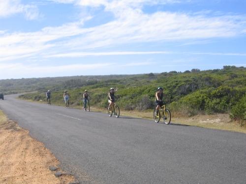 Die Tourgruppe auf dem Fahrraedern auf dem Weg zum Kap der Guten Hoffnung