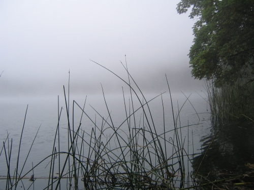 Der Kratersee im Nebel
