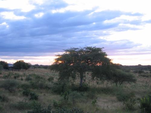 Sonnenuntergang in den Southern Highlands in Tanzania aus dem Zugfenster