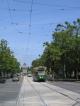 Eine Strassenbahn vor dem Shrine of Rememberance