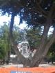 Die Magellan Statue auf dem Plaza de Armas