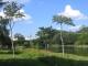 Der Parque Ibirapuera