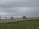 Viele Menschen nutzen den regenfreien Tag am Strand