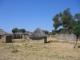 Ein Dorf bei Divundu