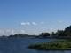 Noch einmal das Ufer des Lake Victoria